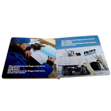 China Supplier  Hard cover board book printing